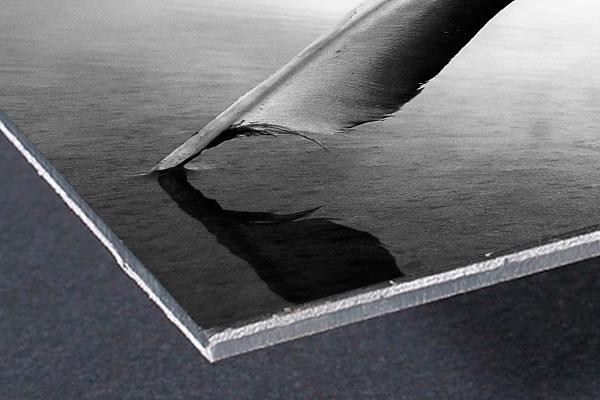 Stampa-foto-Alluminio